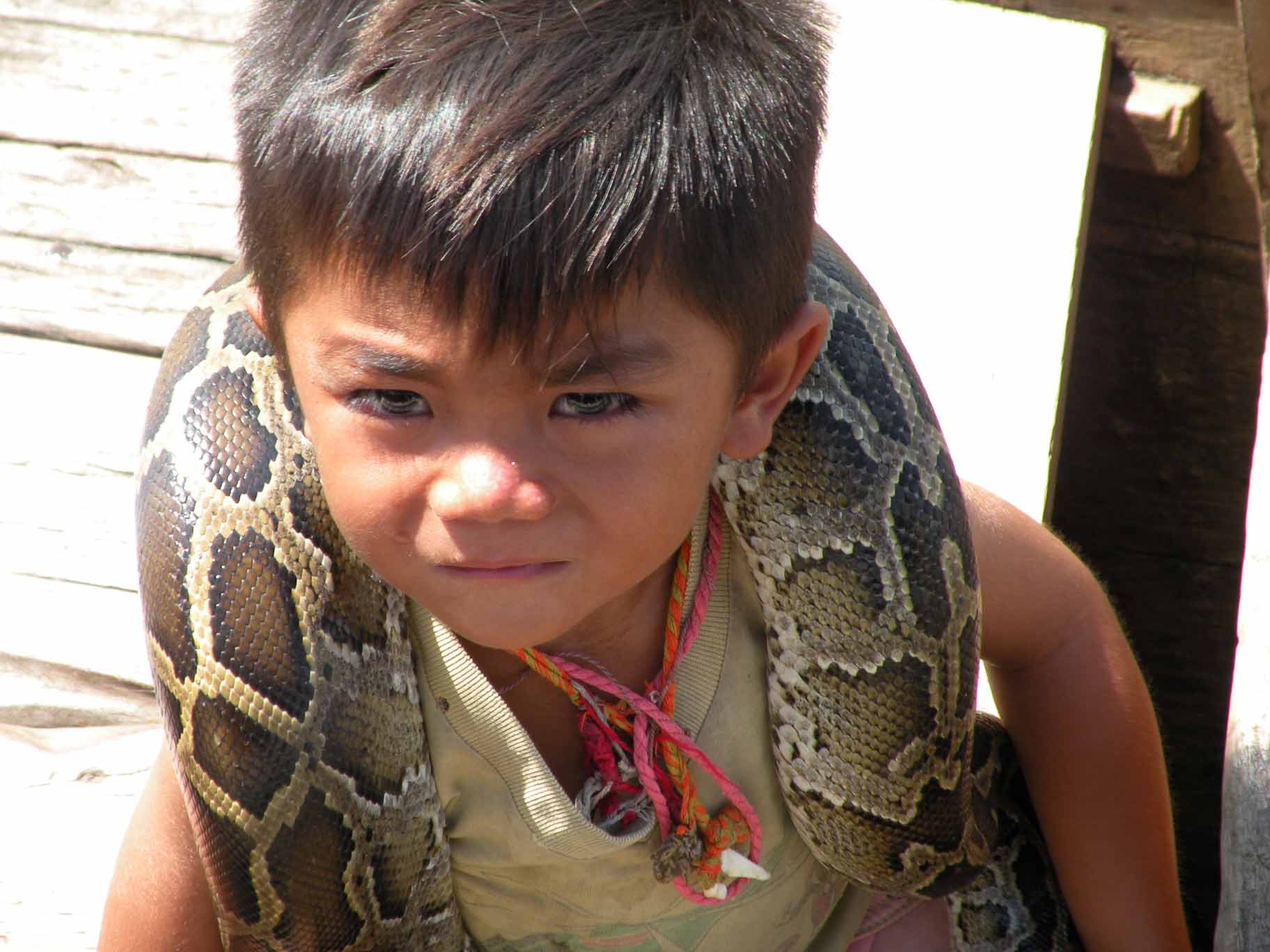 Kids with Pythons, Floating Village on Tonle Sap Lake, Cambodia