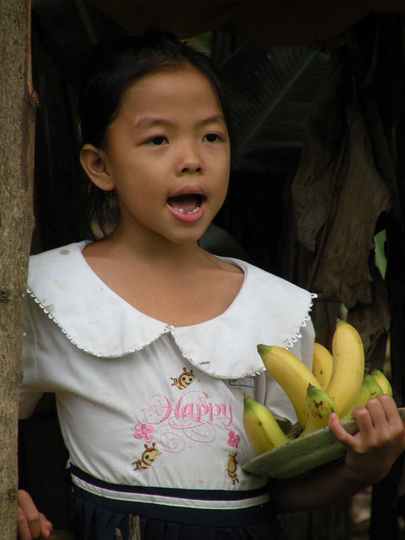 Selling Bananas with Song, Vietnam