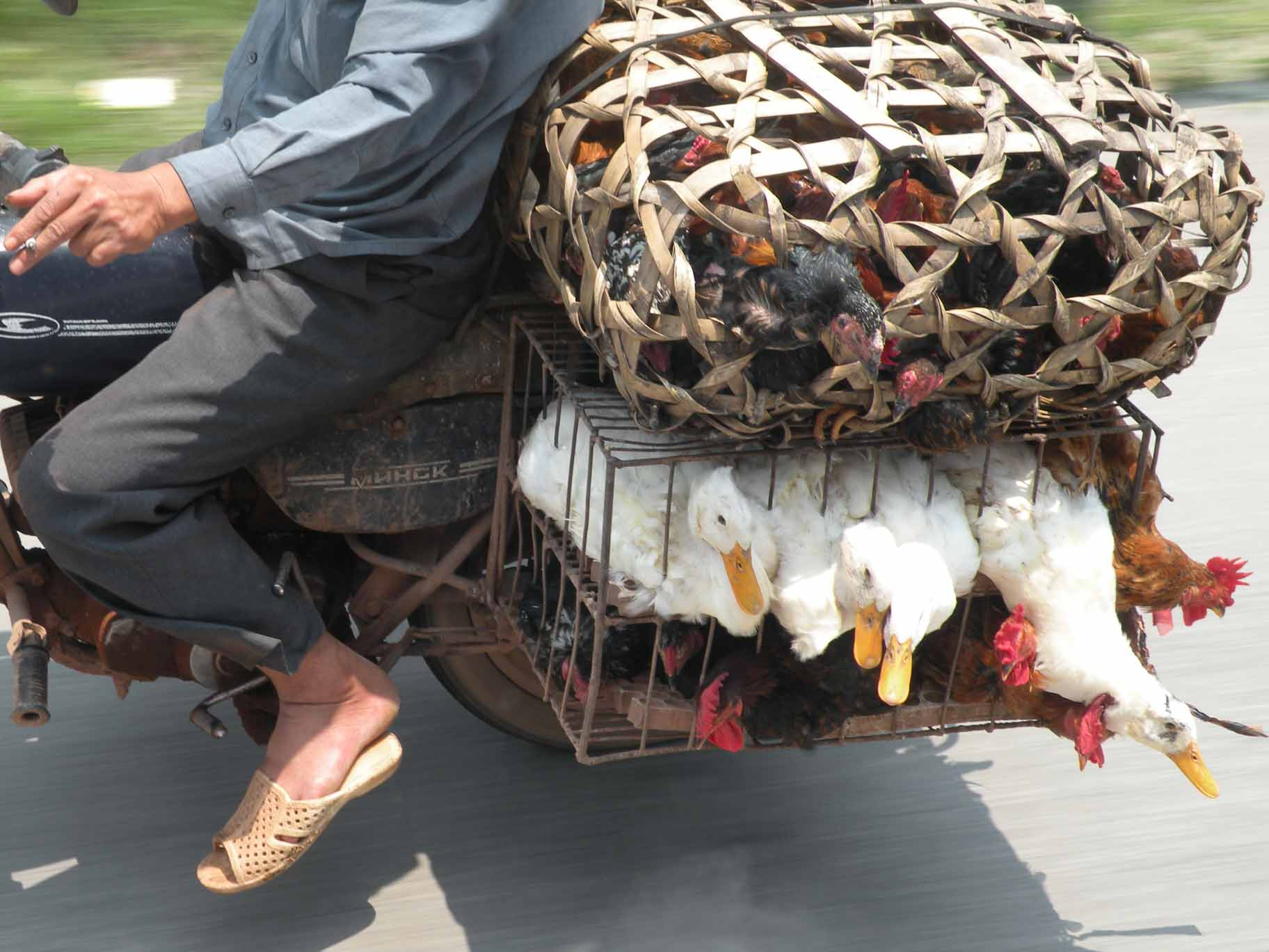 Going to Market, Vietnam